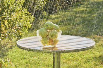 Summer rain and green apples - image gratuit #303275