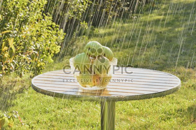 Summer rain and green apples - Free image #303275