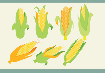 Ear of Corn Vectors - vector gratuit #305435
