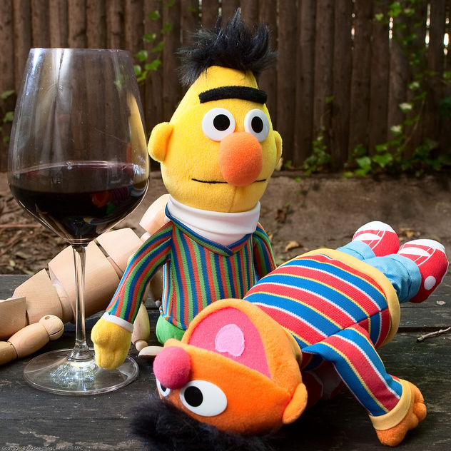 Bert and Ernie: Getting Trashed on Pinot Noir / 20090917.10D.53958.SQ / SML - image gratuit #308535
