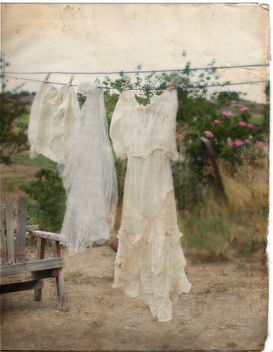 Laundry Day - Free image #311415