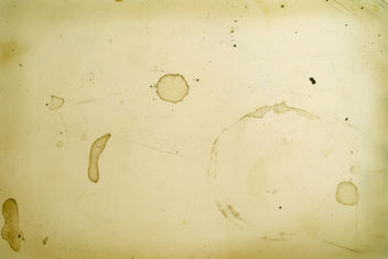 Stains and Scratches - Free image #312685