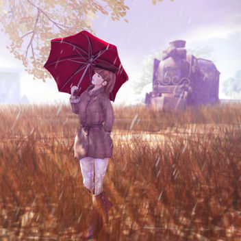Rainy day - image #314985 gratis