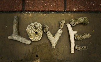 Love is in Bonaire - Free image #317885