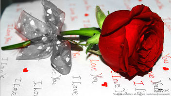 Love in saint valentines breeze with rose flower#4[Happy Valentines Day] - image #320235 gratis