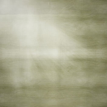 forest light - texture - image #320995 gratis