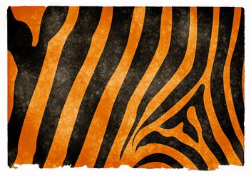Tiger Striped Grunge Texture - Free image #323885