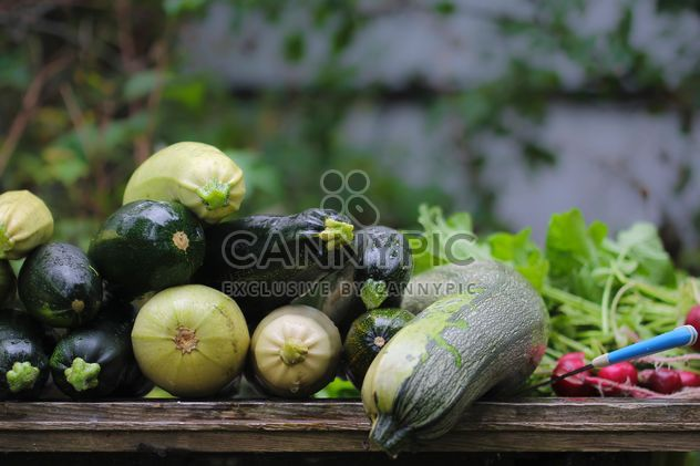 vegetable marrows - image gratuit #327895
