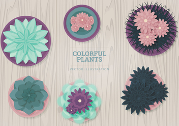 Plants Vector Illustration - Free vector #328325