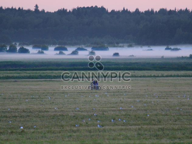 Fog over the river Stormy Leningrad region - Free image #329945