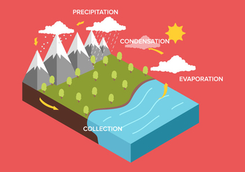 Water Cycle Diagram - Kostenloses vector #330095