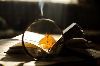 Autumn yellow leaves through a magnifying glass and incense sticks and book - бесплатный image #330395