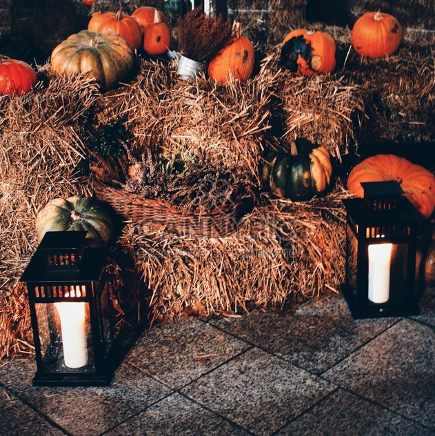 Pumpkin decor - Free image #330455