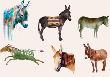 Donkey watercolor - Free vector #330465