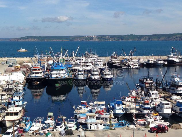 Boats and white yachts moored in harbor - Free image #333155