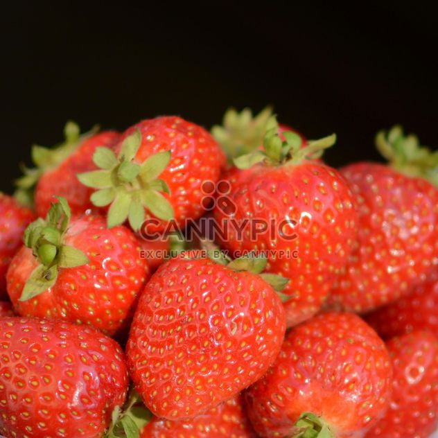 Strawberry texture - Free image #334305