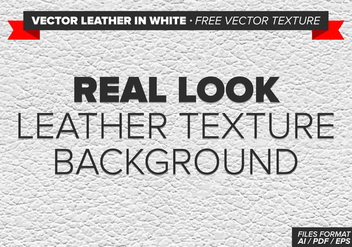 Vector Leather In White Free Vector Texture - Free vector #334585