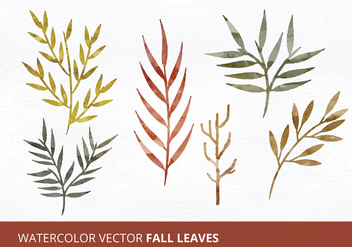 Watercolor Vector Leaves - vector gratuit #335445