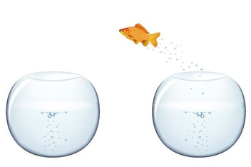 Fish jumping - vector #338965 gratis