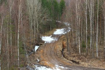 Landscape with road in forest - бесплатный image #339185