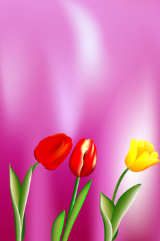 Beautiful vector tulips - бесплатный vector #339575