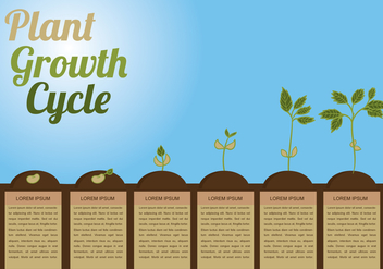 Plant Growth Circle Vector - vector #341965 gratis