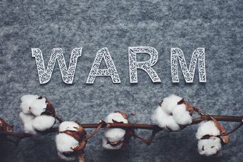 Cotton branch and word warm on felted background - бесплатный image #342535