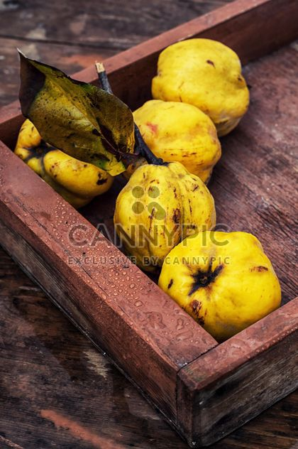 Quinces in wooden box close-up - image #342595 gratis