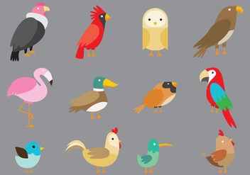 Cartoon Birds - Free vector #343335
