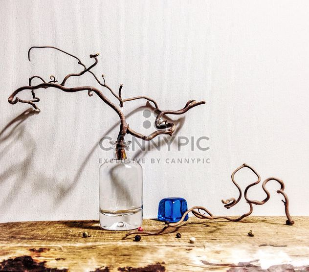 Still life with branch in bottle - Free image #345065