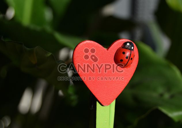 Decorative heart with toy ladybug - image #346585 gratis