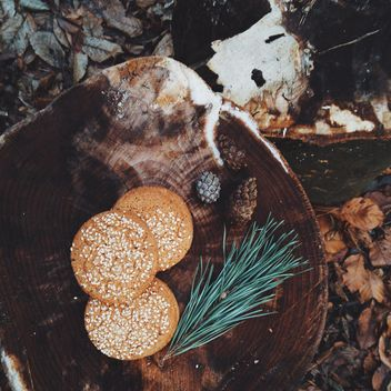 Cookies with sesame on wooden stump - бесплатный image #347175