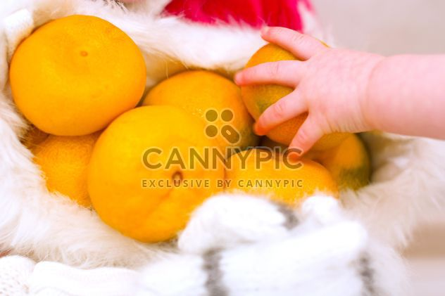 Tangerines in small hand closeup - Free image #347995