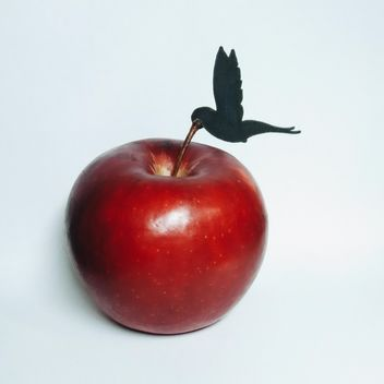 Composition with hummingbird and red apple on white background - image gratuit #348655
