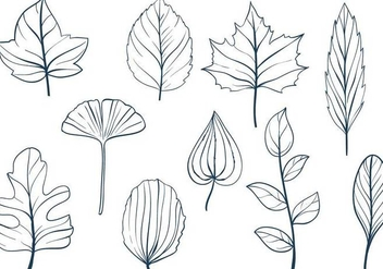 Free Leaves Vectors - vector gratuit #348795
