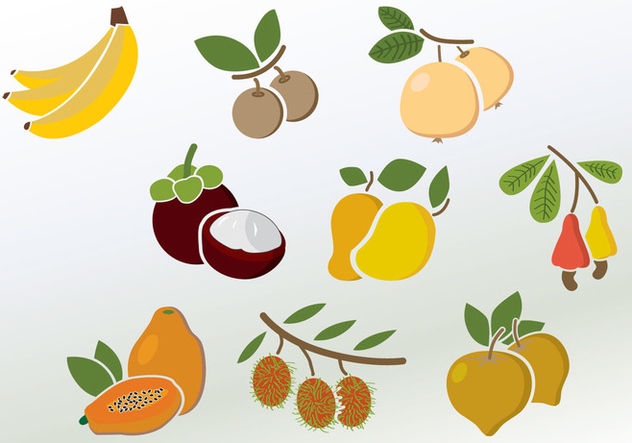Set of Colorful Fruit Vectors - vector #352815 gratis