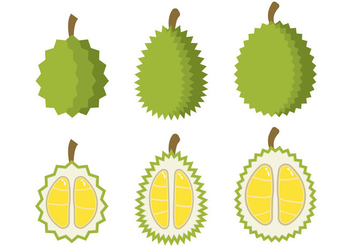 Durian Vector - Free vector #353245