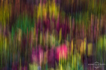 Panning shot of Flowers and Leaves - бесплатный image #355565