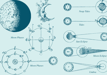 Old Style Drawing Moon Phase Vectors - vector #355835 gratis