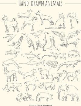 Hand-drawn animals set - Free vector #356445