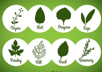 Herbs And Spices Green Icons Vector - бесплатный vector #357815