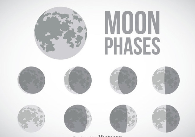 Moon Phase Gray Icons Vector - Kostenloses vector #358385