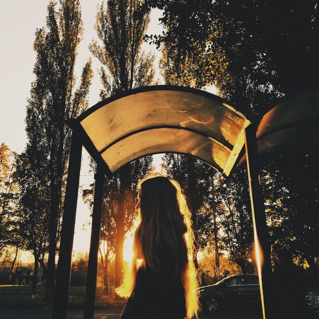 Girl in sunny evening - бесплатный image #363655