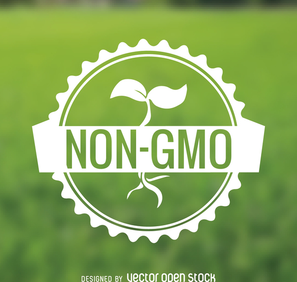 Non GMO food sticker - Free vector #365045