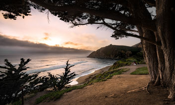 Gray Whale Cove - image #365585 gratis