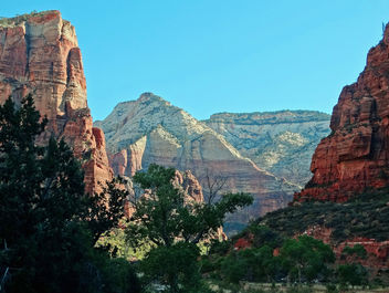 The Heart of the Canyon, Zion NP 4-15 - Kostenloses image #366665