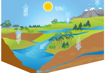 Free Water Cycle Diagram Vector - Free vector #366945