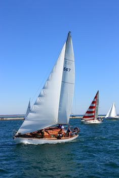 Regatta on the Black Sea - image #367625 gratis