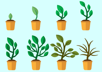 Free Grow Up Plants Vector - vector gratuit #369025