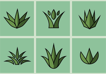 Maguey Vector Illustrations - бесплатный vector #371215